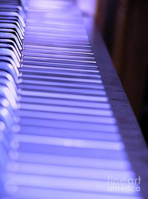 Photograph - The Blues by Susan  Dimitrakopoulos
