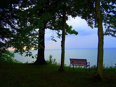 Photograph - The Bluffs Bench by Richard Ricci