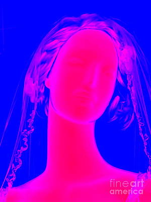Photograph - The Blushing Bride by Ed Weidman