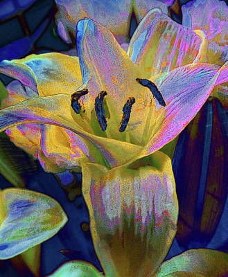 Photograph - The Blushing Lilly by David Pantuso