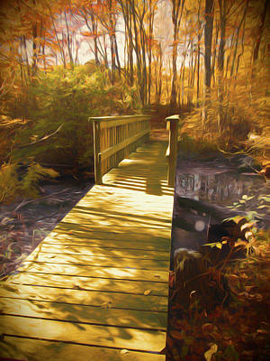 Photograph - The Boardwalk And Bridge by Rusty R Smith