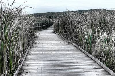 Photograph - The Boardwalk by Michaela Preston
