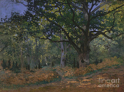 The Bodmer Oak, Fontainebleau Forest, 1865  Art Print