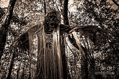 Photograph - The Bogeyman by Paul Mashburn