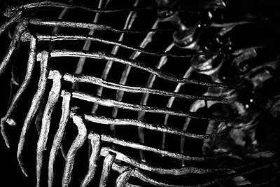 Photograph - The Bone Cage In Black And White by Nadalyn Larsen