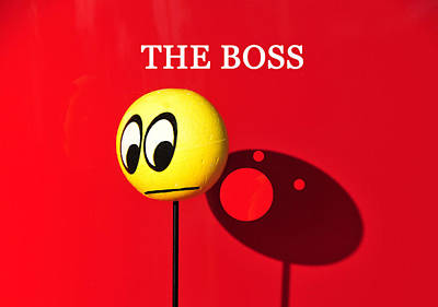 Photograph - The Boss  by David Lee Thompson