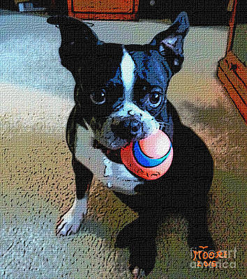 Boston Terrier Painting - The Bostons Ball 5 by Michael Moore