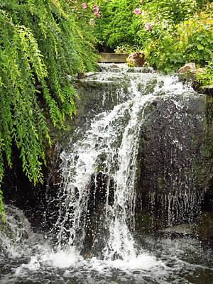 Photograph - The Botanic Waterfall  by Lori Frisch