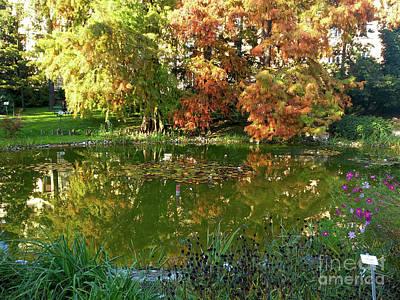 Photograph - The Botanical Garden Zagreb  by Jasna Dragun