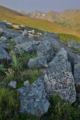 Photograph - The Boulders Along Mt. Evans Highway by Ray Mathis