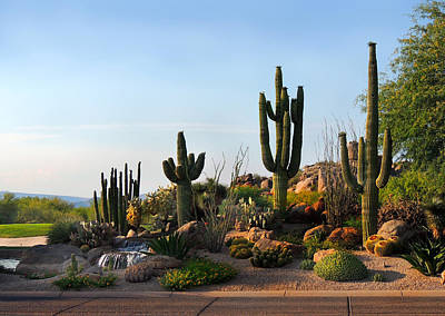 Cave Creek Photograph - The Boulders by Gordon Beck