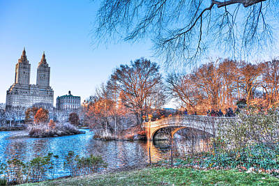 The Bow Bridge In Central Park Print by Randy Aveille