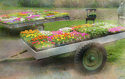 Planting Flowers Photograph - The Box Cart by Diana Angstadt