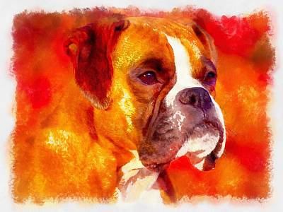 The Boxer Art Print by Maciek Froncisz