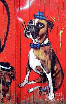 Photograph - The Boxer   Wall Graffiti by Elaine Manley