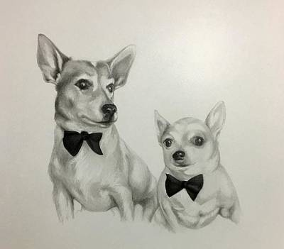 Drawing - The Boys by Lori Ippolito
