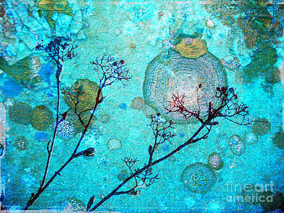 Photograph - The Branches And The Moon by Tara Turner
