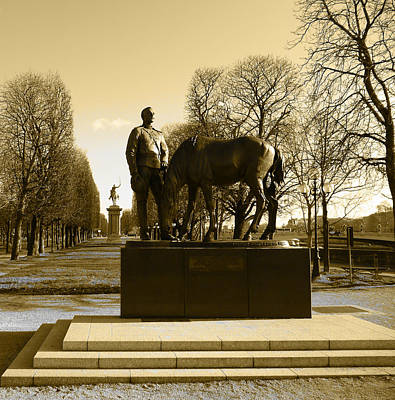 Photograph - The Brave Soldier by Laura Greco