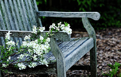 Photograph - The Bride's Garden Bench by Debbie Oppermann
