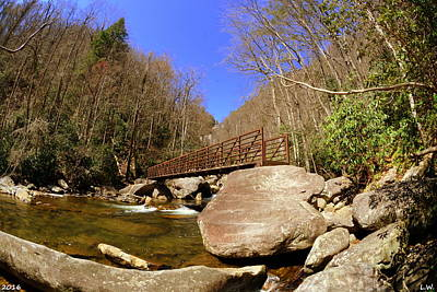 Photograph - The Bridge At Lower Whitewater Falls by Lisa Wooten