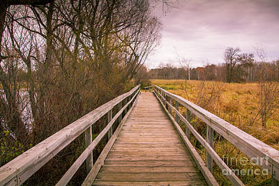 Photograph - The Bridge by CJ Benson