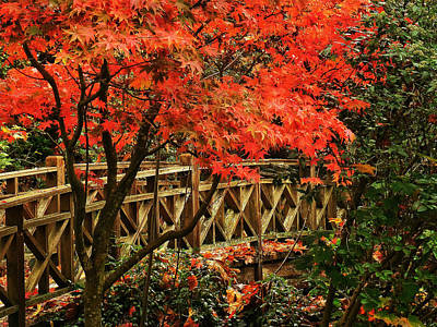 The Bridge In The Park Art Print