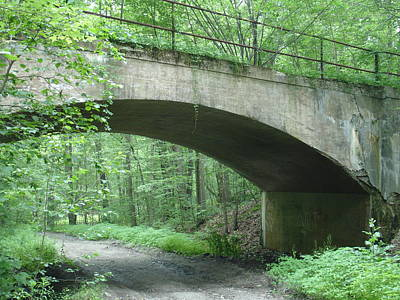 The Bridge Art Print by Robyn Leakey