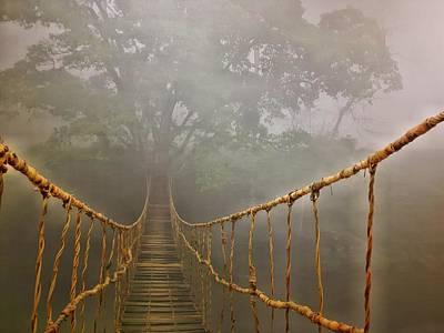 Photograph - The Bridge by Thomas M Pikolin