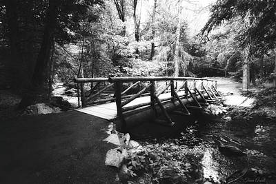 Photograph - The Bridge Through The Woods In Black And White by Trina Ansel