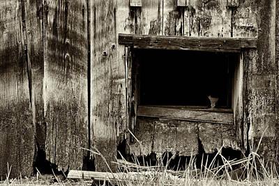 Photograph - The Broken Glass by Inge Riis McDonald
