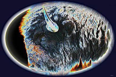 Bison Digital Art - The Buffalo by Bill and Deb Hayes