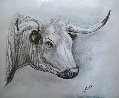 Longhorn Drawing - The Bull by Joan Mace
