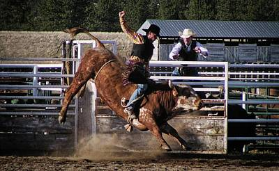 Photograph - The Bullrider by Bryan Smith