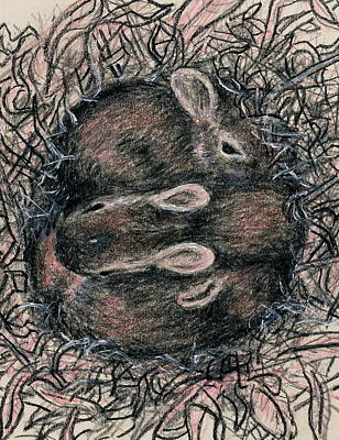 Mixed Media - The Bunny Nest by Kathleen McDermott
