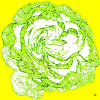 Pasta Al Dente - The Cabbage Rose by Will Borden