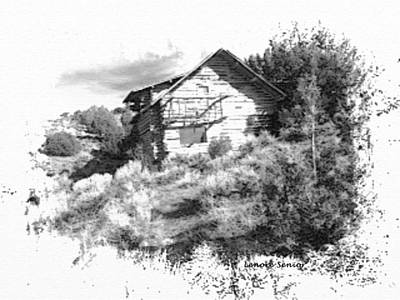 Photograph - The Cabin In Black And White by Lenore Senior