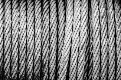 Photograph - The Cable by Steven Green