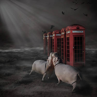 Hippopotamus Digital Art - The Call That Never Comes by Tamara Przybysz