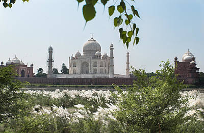Photograph - The Calm Behind The Taj Mahal by Art Atkins