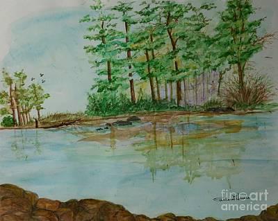 The Campsite At Lows Lake Delaware Art Print
