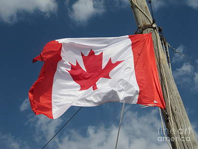 Photograph - The Canadian Flag And Cloud by Donna L Munro