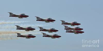 Photograph - The Canadian Forces Snowbirds by Tony Lee
