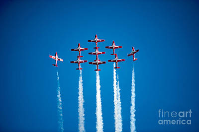 Photograph - The Canadian Snowbirds by Wayne Wilton