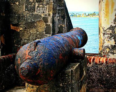 The Cannon  Art Print