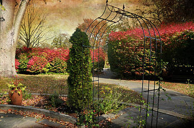 Photograph - The Caramoor Trellis by Diana Angstadt