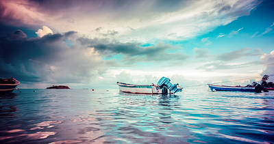 Photograph - The Caribbean Morning by Radek Spanninger