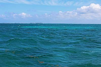 Photograph - The Caribbean Sea by Michiale Schneider