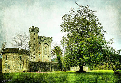 Photograph - The Castle And The Magnolia - Vintage by Weston Westmoreland