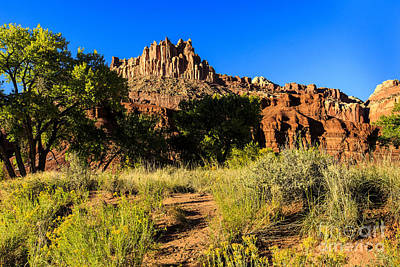 Photograph - The Castle At Capitol Reef by Ben Graham