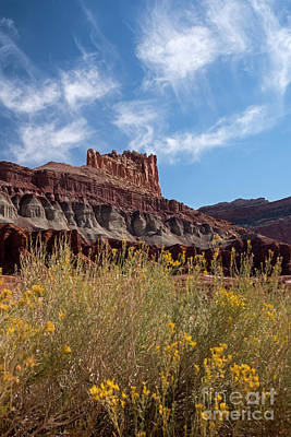 Photograph - Rock Formation Capital Reef by Cindy Murphy - NightVisions